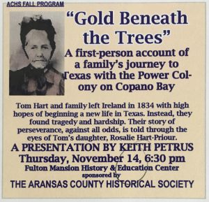 Gold Beneath the Trees Poster